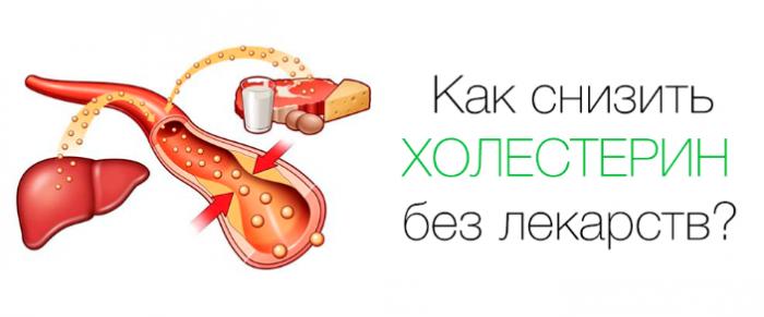 влияние холестерина