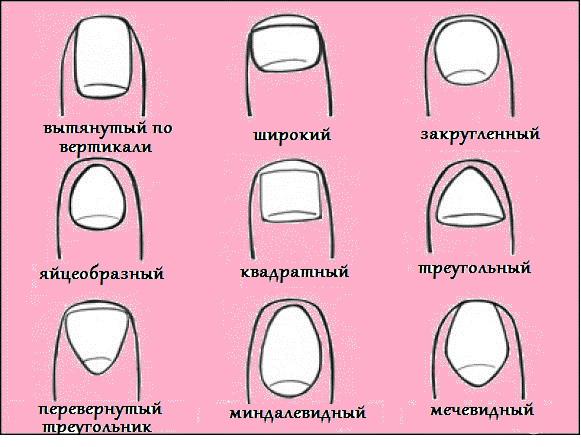 как определить какие глисты у человека