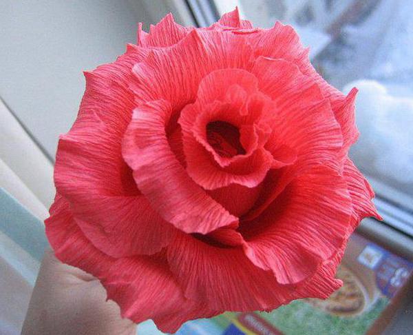 Видео цветы своими руками из гофрированной бумаги 49