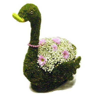 Корзинка какой цветок