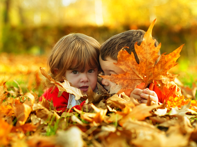 игры в листьях